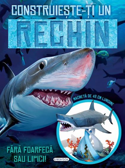GIRASOL - Construiește-ți un rechin 1