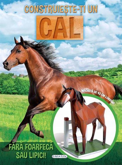 GIRASOL - Construiește-ți un cal 1